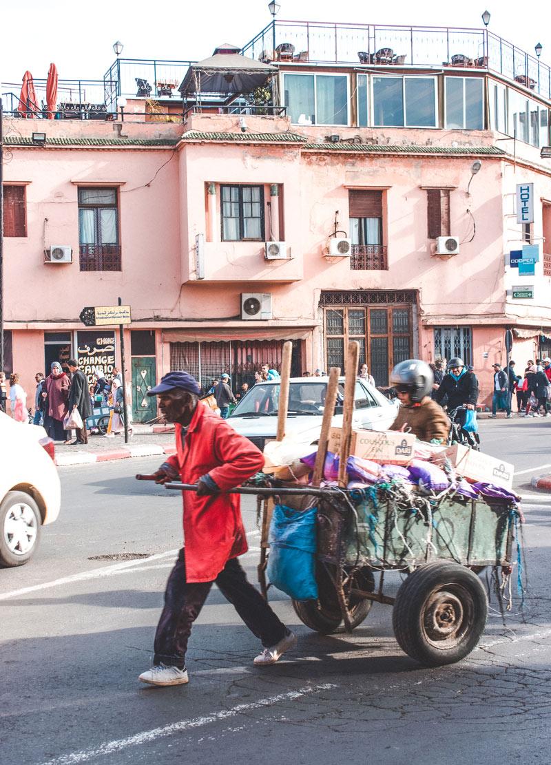 Moroccan Hardworker
