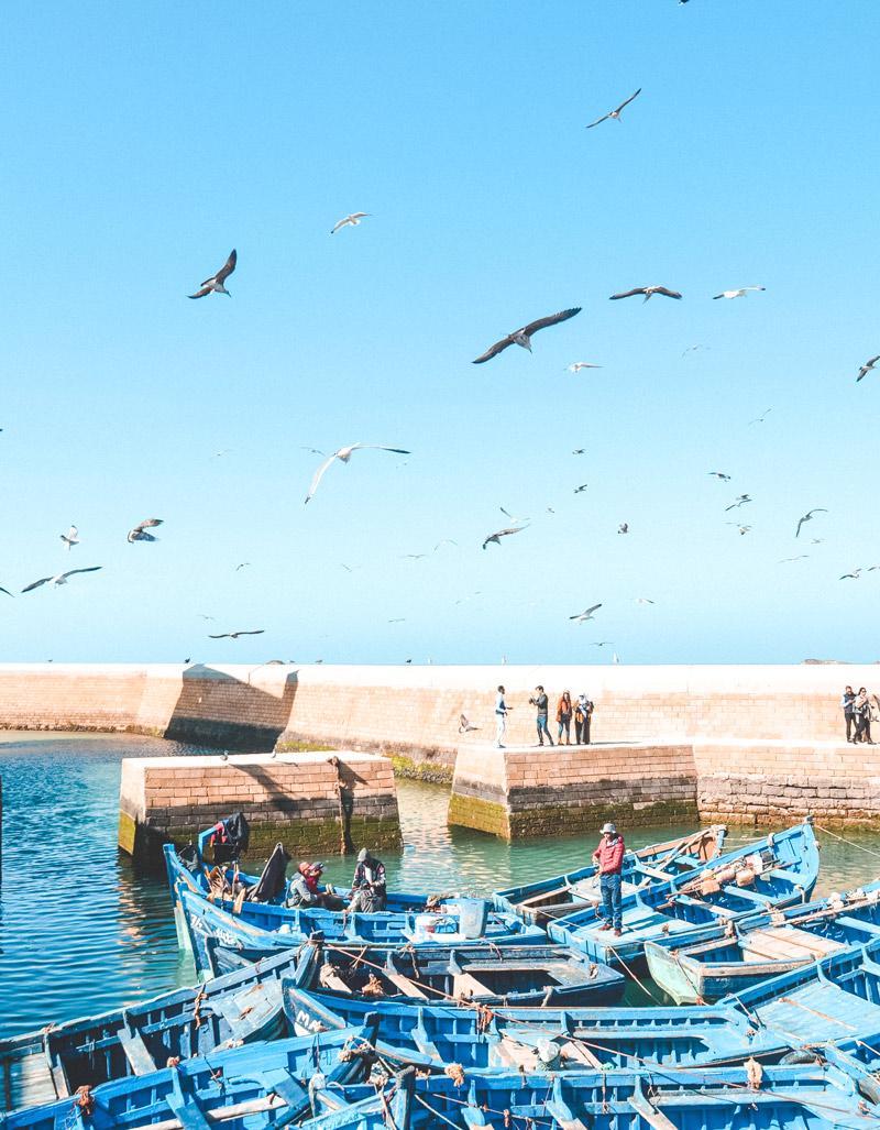 Essaouira travel guide