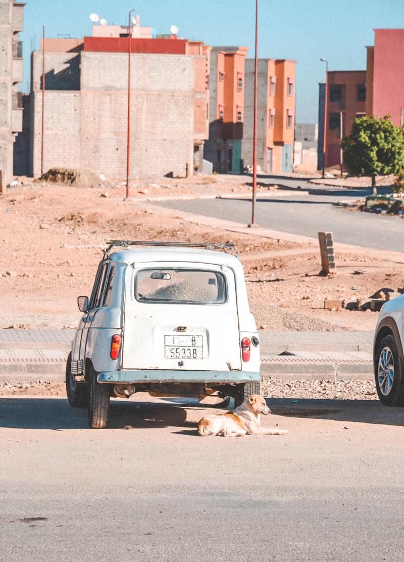 day trip marrakech essaouira